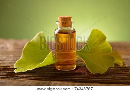 Ginkgo essential extract in a bottle and fresh leaves