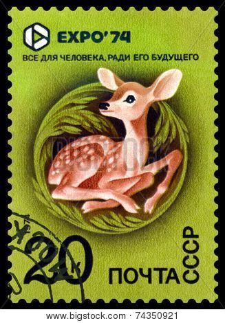 Vintage  Postage Stamp. Expo 74. Fawn.