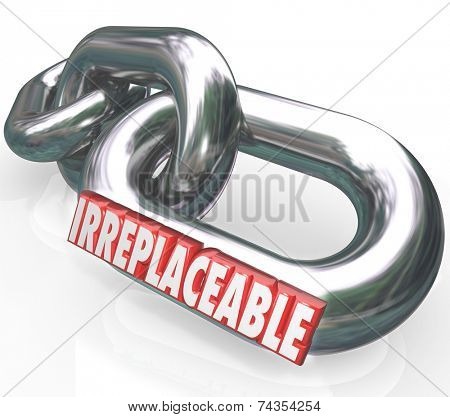 Irreplaceable word in red 3d letters on chain links connected to illustrate essential, required, necessary and integral resources, parts or services