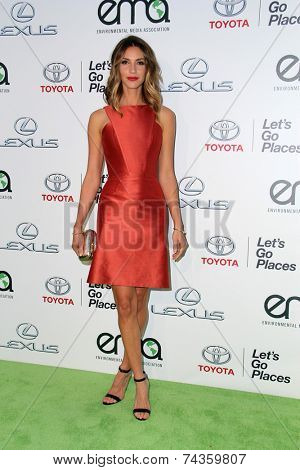 LOS ANGELES - OCT 18:  Dawn Olivieri at the 2014 Environmental Media Awards at Warner Brothers Studios on October 18, 2014 in Burbank, CA
