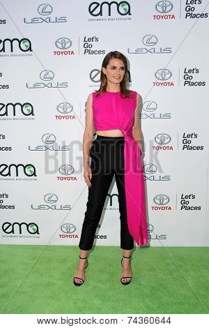 LOS ANGELES - OCT 18:  Stana Katic at the 2014 Environmental Media Awards at Warner Brothers Studios on October 18, 2014 in Burbank, CA
