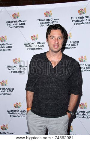 LOS ANGELES - OCT 19:  Zach Braff at the 25th Annual