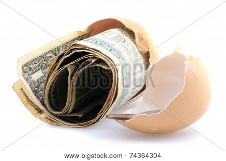 Dolars In The Empty Egg Shell