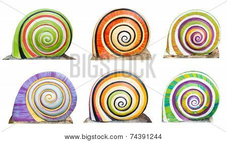 Group Of Colorful Cocnrete Gastropod