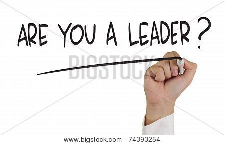 Are You a Leader ?