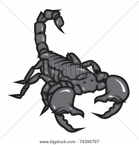 Scorpion Vector Illustration