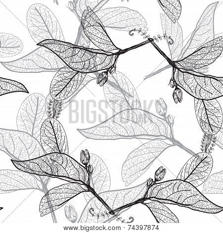 Leaves Contours On A White Background. Floral Seamless Pattern
