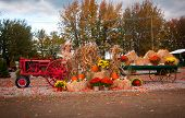 foto of hayride  - Old tractor as fall harvest decor in yard - JPG