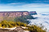 stock photo of bolivar  - View from the Roraima tepui on Kukenan tepui at the fog  - JPG