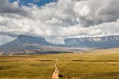 picture of canaima  - Track to Mount Roraima  - JPG