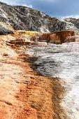 picture of mammoth  - Mineral formations at the Mammoth hot springs area in Yellowstone national Park - JPG