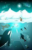 stock photo of eskimos  - Arctic underwater marine life with whale - JPG