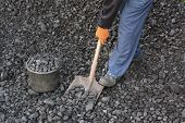 stock photo of power-shovel  - Miner is picking up coal with shovel - JPG
