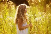 stock photo of beatitudes  - Cute little girl among white wildflowers in the evening - JPG
