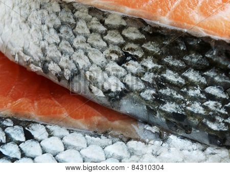 Salmon Fish Steaks Detail
