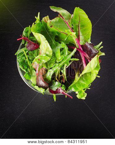 Fresh Healthy Green Salad