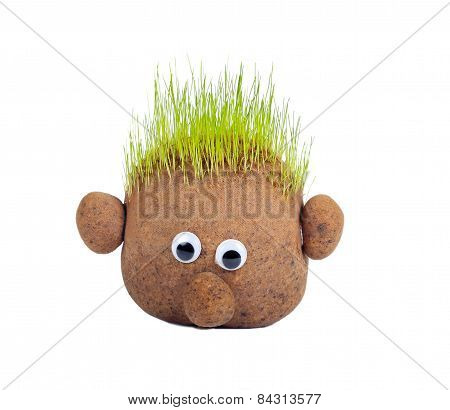 Head With Grass
