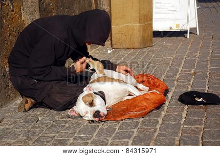 Beggar, His Dog And Rat