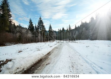 Carriageway Road In The Winter Forest