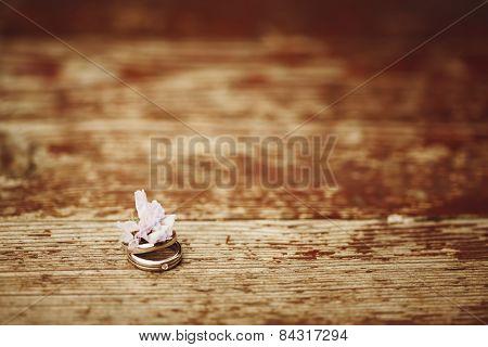 Wedding Engagement Rings Close Up