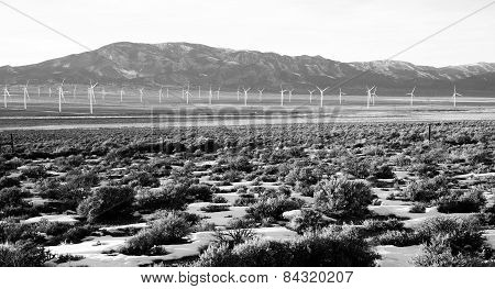 Wind Farm Green Renewable Energy Generators Great Basin Nevada
