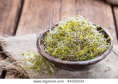 Fresh Broccoli Sprouts