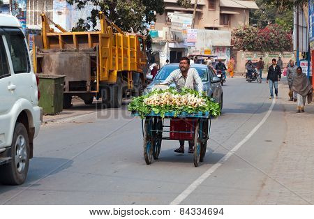 Indian Man Carries A Cart With Vegetables On The Road