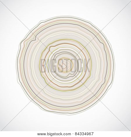 Cross Section Of Tree Trunk Isolated On White Background. Wood Stump Rings Texture, Wooden Backgroun
