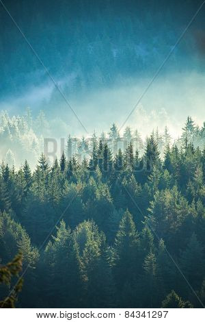 View Of Misty Fog Mountains In Autumn
