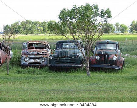 row of abandoned junkyard vehicles