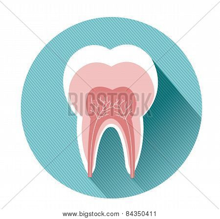 tooth icon with long shadow effect