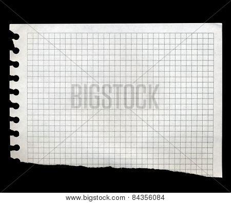 Torn Piece Of Math Paper