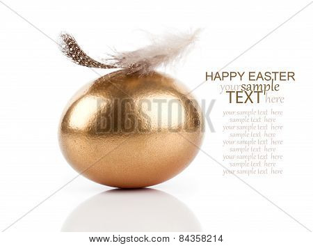 Golden Egg And Feather Isolated On White Background