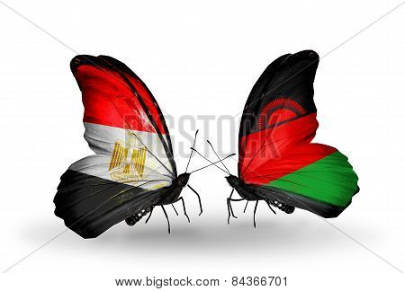 Two Butterflies With Flags On Wings As Symbol Of Relations Egypt And Malawi