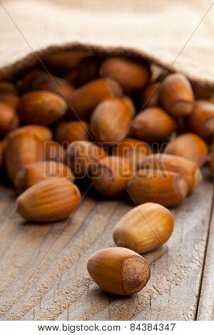 Hazelnut Pile In Burlap Sack