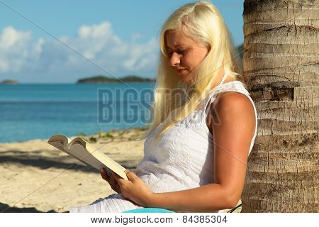 Woman Sitting By Palm Tree And Reading A Book