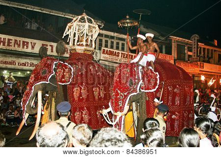 Man Are Riding On Their Beautiful Dressed Trained Working Elefants In The Festival Pera Hera In Cand
