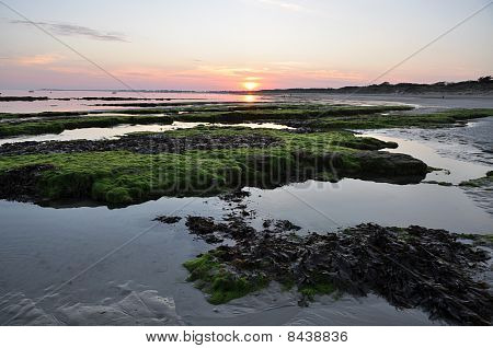 Sandy Beach At Low Tide