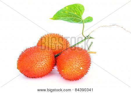 Gac Fruit Isolated On White Background