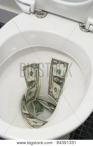 Dollar Bills Flushed Down The Toilet