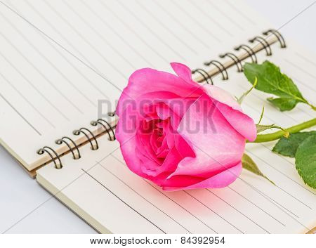 Pink Rose And Diary