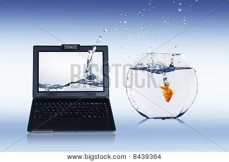 Goldfish y portátil