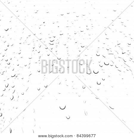 Water bubbles on white
