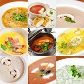 picture of chicken  - First courses collage including pileshka supa ukrainian borsch creamy mushroom soup pumpkin soup tomato seafood soup chicken broth meat solyanka and okroshka - JPG