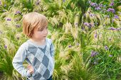 stock photo of pullovers  - Adorable blond toddler boy playing in a garden - JPG