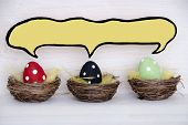 image of easter basket eggs  - Three Colorful Red Black And Green Dotted And Easter Eggs In Easter Baskets Or Nest On White Wooden Background With Comic Speech Balloon With Copy Space Free Text Or Your Text Here For Advertisement Used As Easter Decoration Or Easter Greetings - JPG