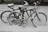picture of thor  - Bicycles under snow during massive Winter Storm Thor - JPG