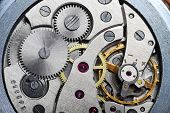picture of turn-up  - very close up view on watch gears - JPG