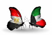 pic of kuwait  - Two butterflies with flags on wings as symbol of relations Egypt and Kuwait - JPG
