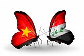 stock photo of iraq  - Two butterflies with flags on wings as symbol of relations Vietnam and Iraq - JPG